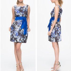 Eliza J. Blue Floral Cocktail Dress Sz 8